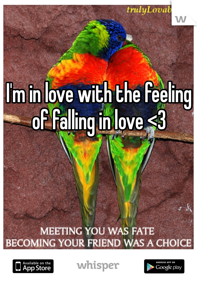 I'm in love with the feeling of falling in love <3