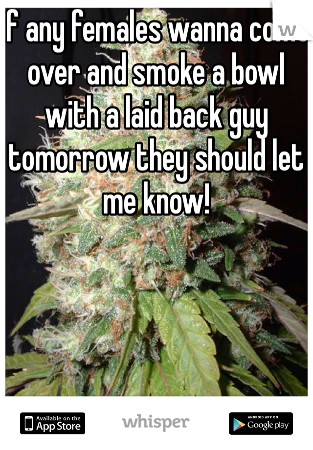 if any females wanna come over and smoke a bowl with a laid back guy tomorrow they should let me know!