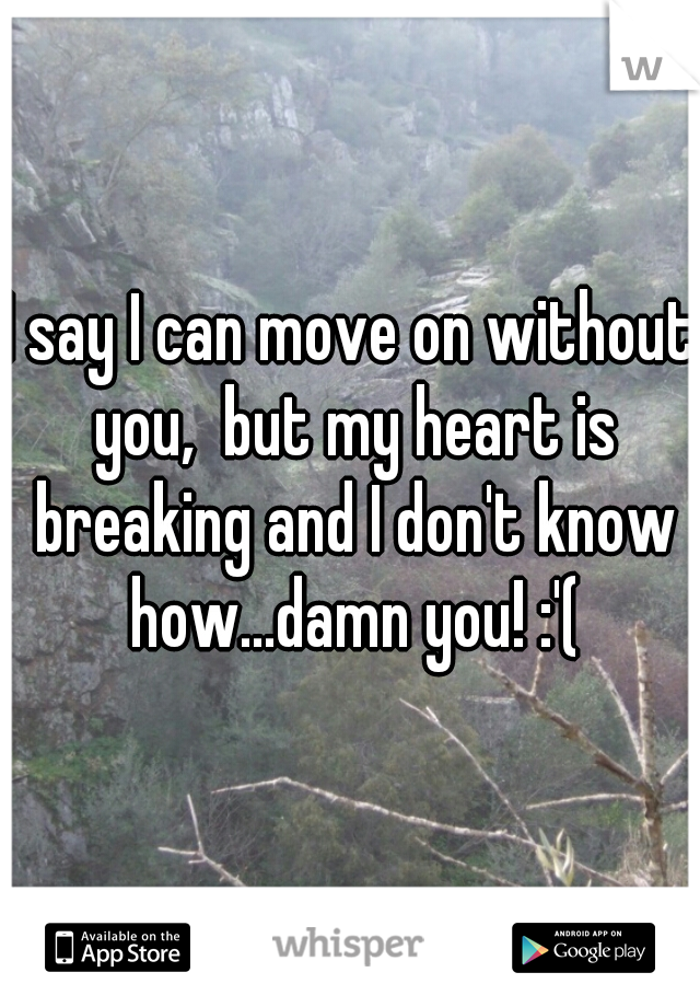 I say I can move on without you,  but my heart is breaking and I don't know how...damn you! :'(