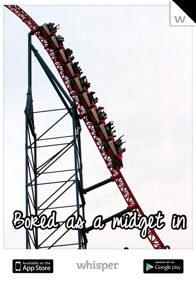 Bored as a midget in an amusement park
