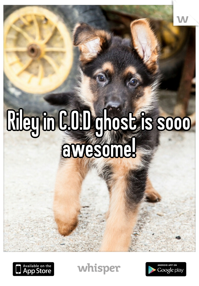 Riley in C.O.D ghost is sooo awesome!