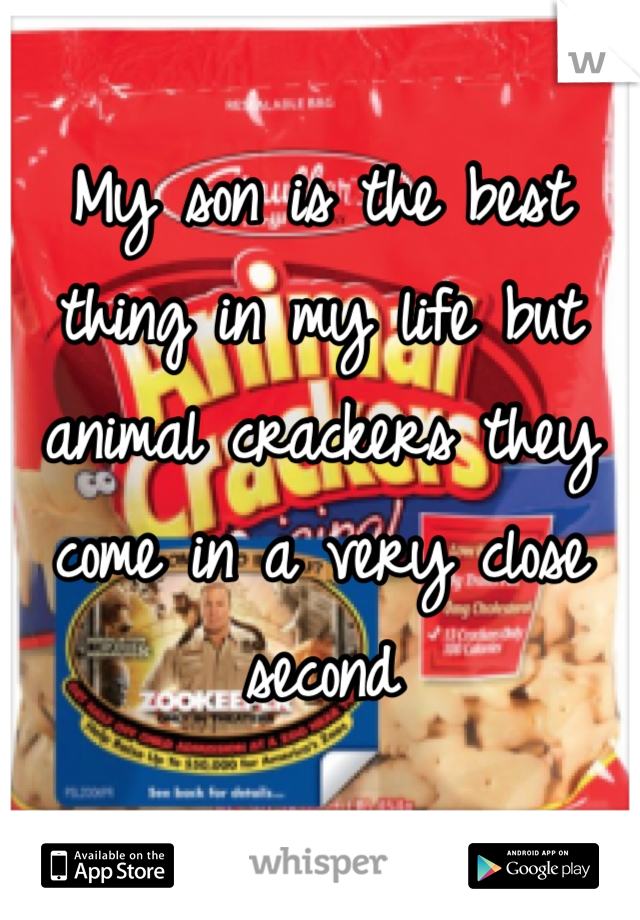 My son is the best thing in my life but animal crackers they come in a very close second