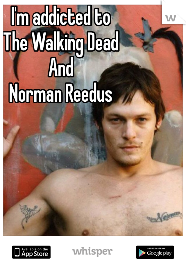 I'm addicted to  The Walking Dead And  Norman Reedus