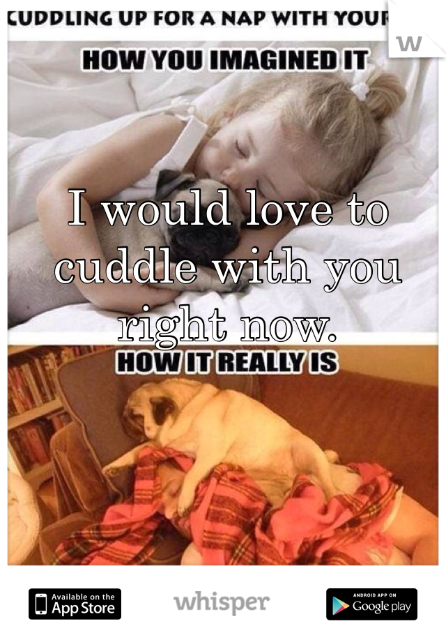I would love to cuddle with you right now.