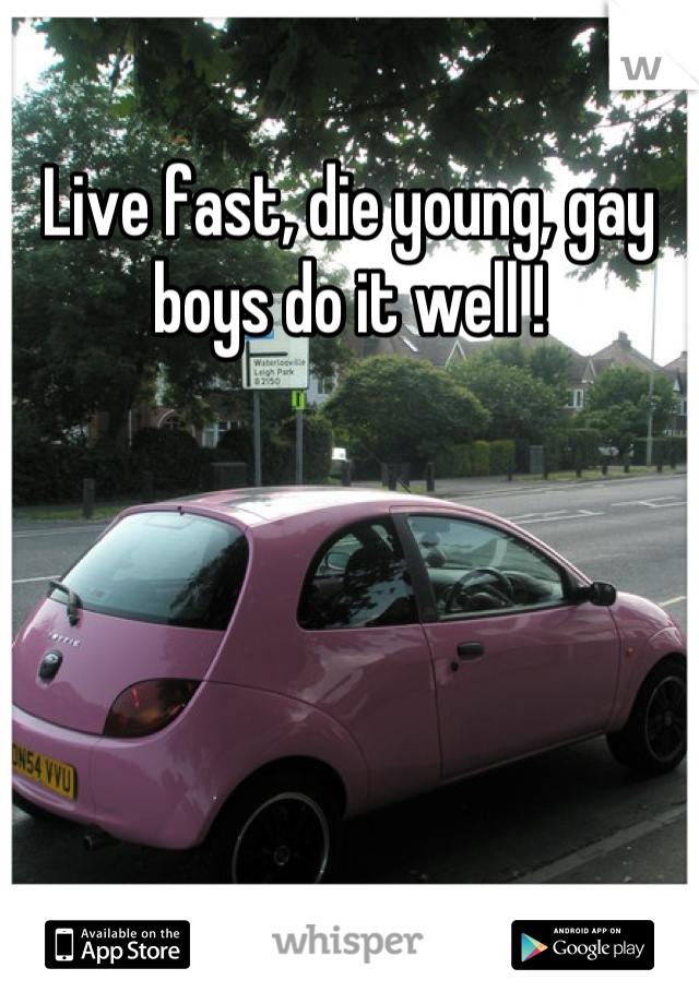 Live fast, die young, gay boys do it well !