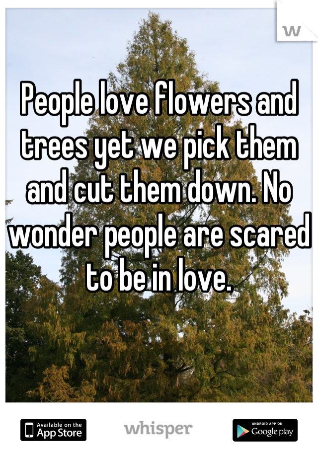 People love flowers and trees yet we pick them and cut them down. No wonder people are scared to be in love.