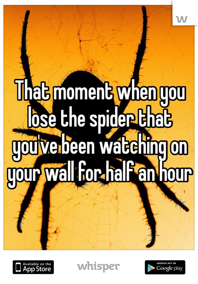 That moment when you lose the spider that you've been watching on your wall for half an hour