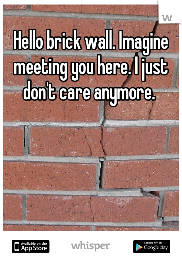 Hello brick wall. Imagine meeting you here. I just don't care anymore.