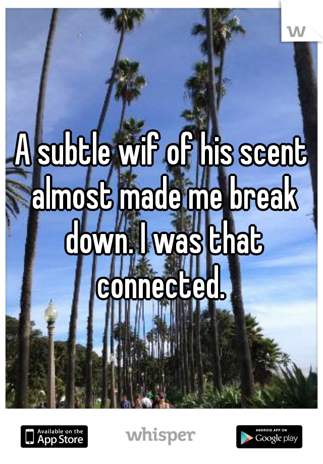 A subtle wif of his scent almost made me break down. I was that connected.