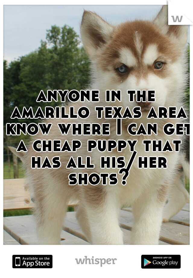 anyone in the amarillo texas area know where I can get a cheap puppy that has all his/her shots?
