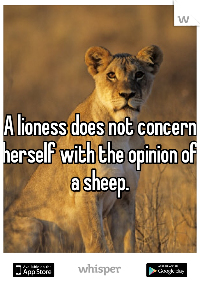 A lioness does not concern herself with the opinion of a sheep.