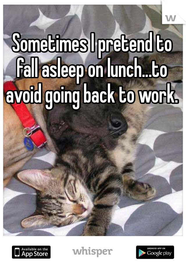Sometimes I pretend to fall asleep on lunch...to avoid going back to work.