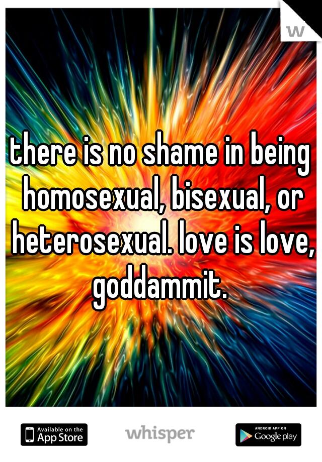 there is no shame in being homosexual, bisexual, or heterosexual. love is love, goddammit.