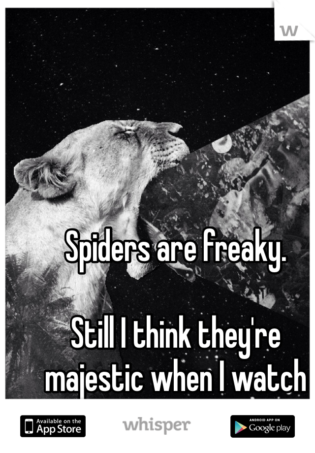Spiders are freaky.   Still I think they're majestic when I watch them in slow motion.