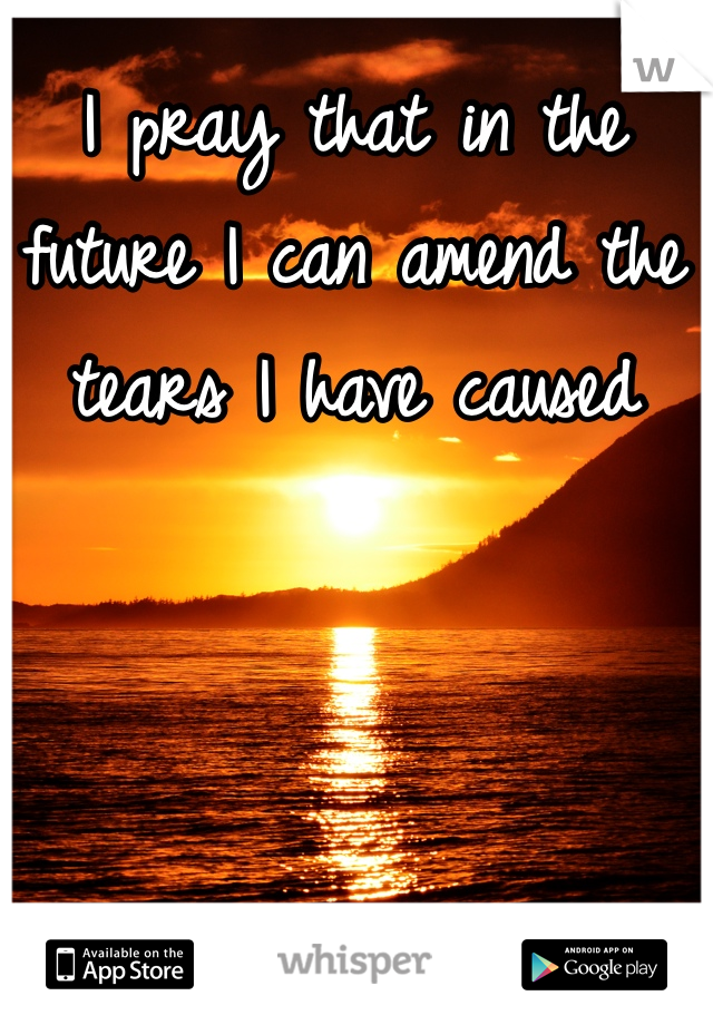 I pray that in the future I can amend the tears I have caused