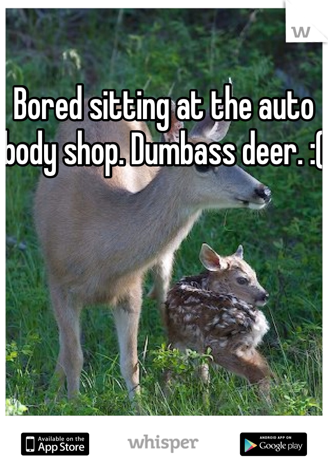 Bored sitting at the auto body shop. Dumbass deer. :(