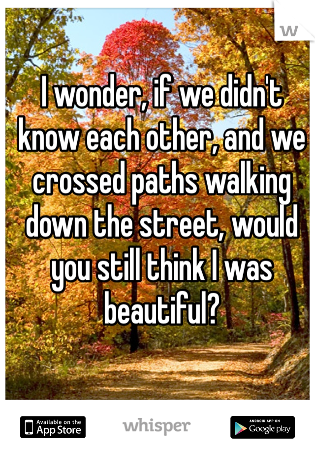 I wonder, if we didn't know each other, and we crossed paths walking down the street, would you still think I was beautiful?