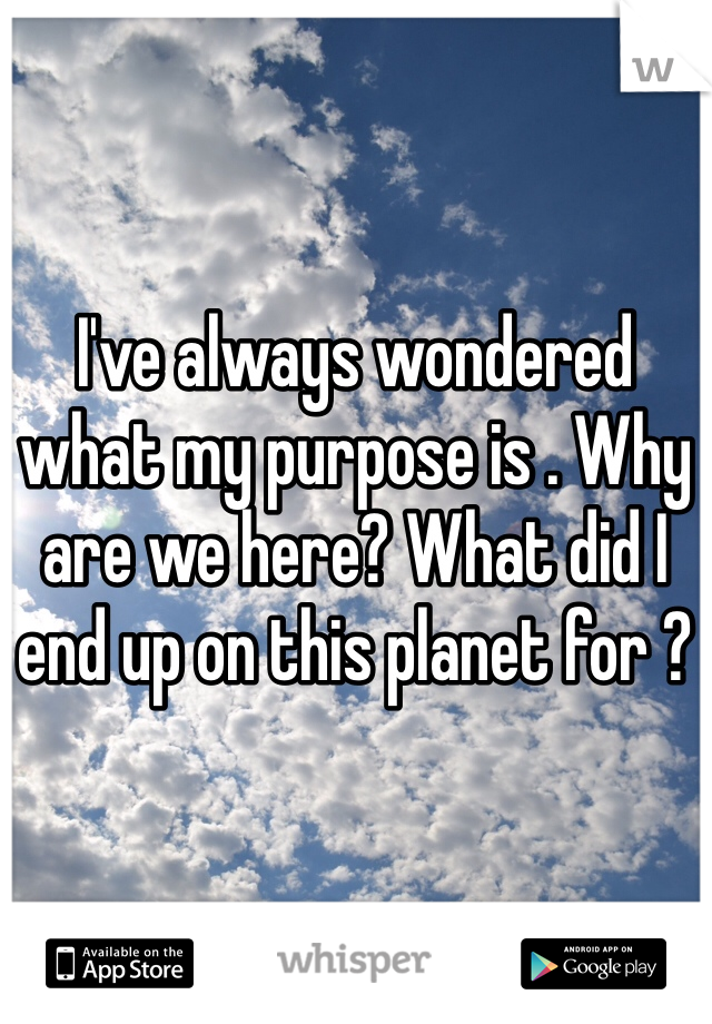 I've always wondered what my purpose is . Why are we here? What did I end up on this planet for ?