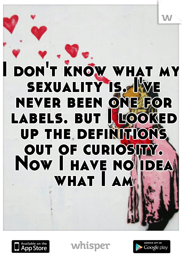 I don't know what my sexuality is. I've never been one for labels. but I looked up the definitions out of curiosity. Now I have no idea what I am