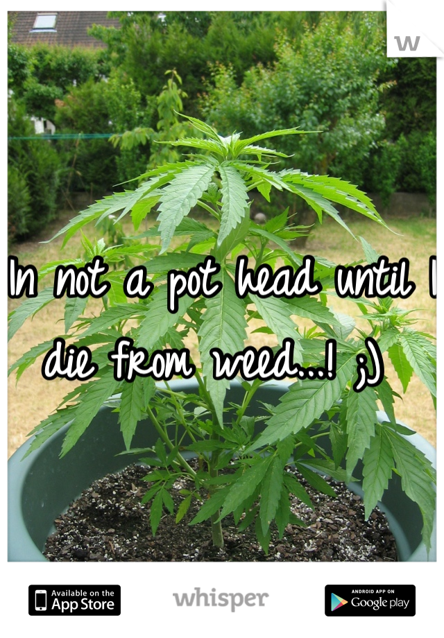 In not a pot head until I die from weed...! ;)