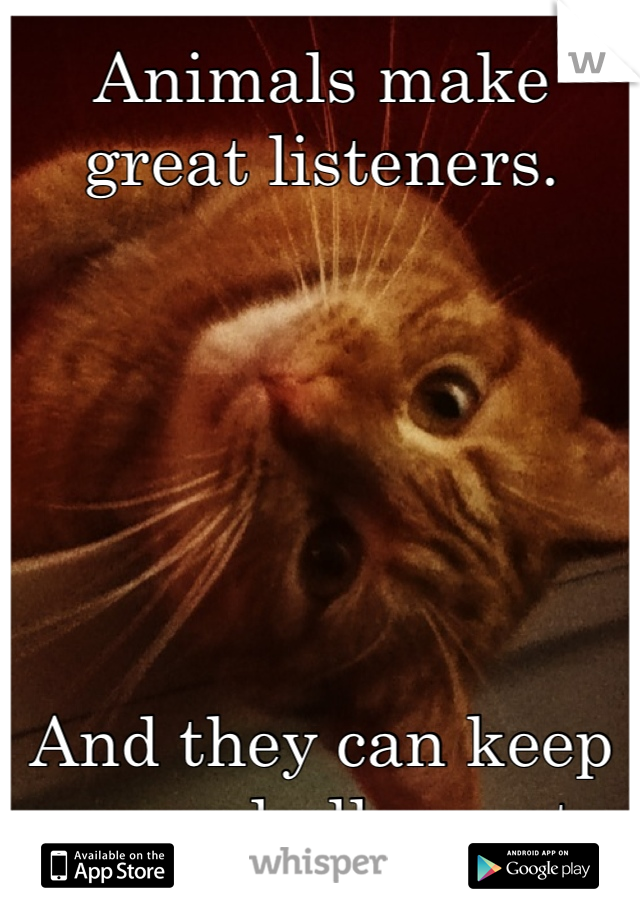 Animals make great listeners.       And they can keep any and all secrets.