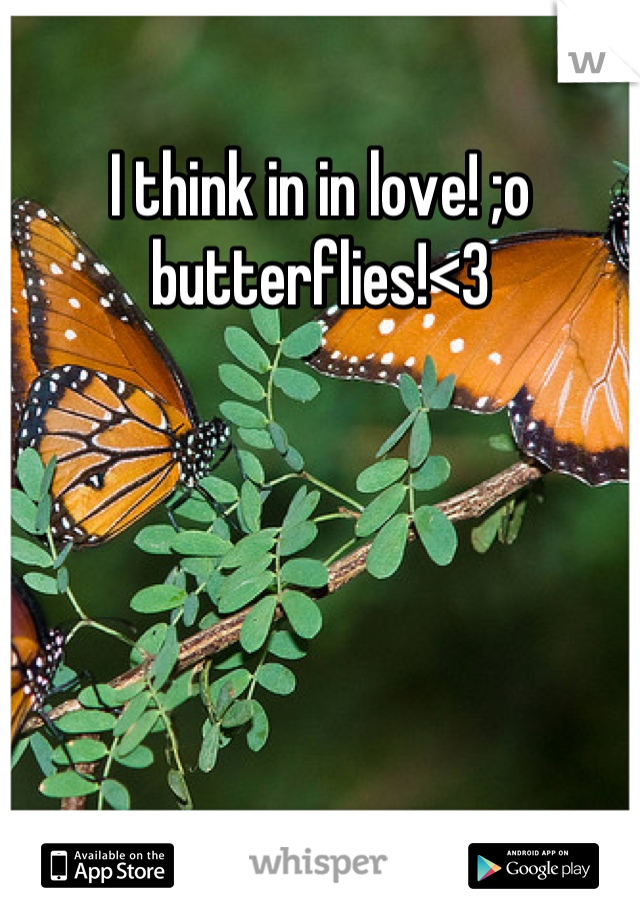 I think in in love! ;o butterflies!<3