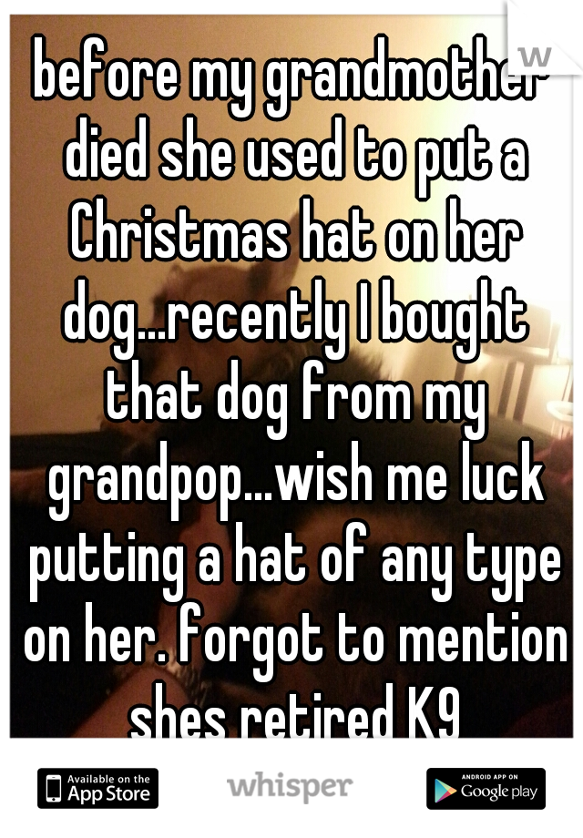 before my grandmother died she used to put a Christmas hat on her dog...recently I bought that dog from my grandpop...wish me luck putting a hat of any type on her. forgot to mention shes retired K9