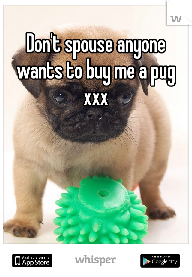 Don't spouse anyone wants to buy me a pug xxx