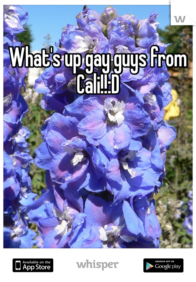 What's up gay guys from Cali!!:D