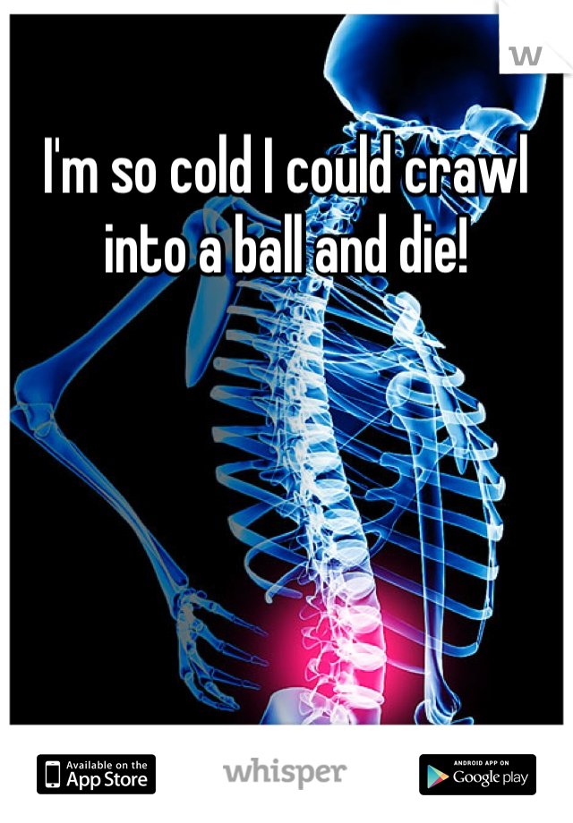 I'm so cold I could crawl into a ball and die!