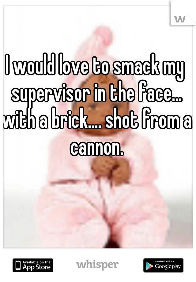 I would love to smack my supervisor in the face... with a brick.... shot from a cannon.