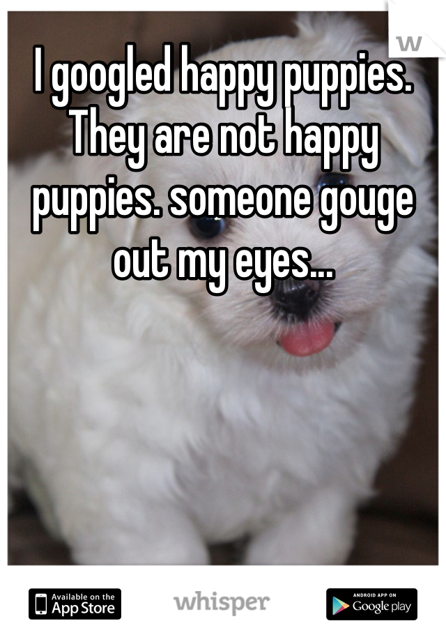 I googled happy puppies. They are not happy puppies. someone gouge out my eyes...