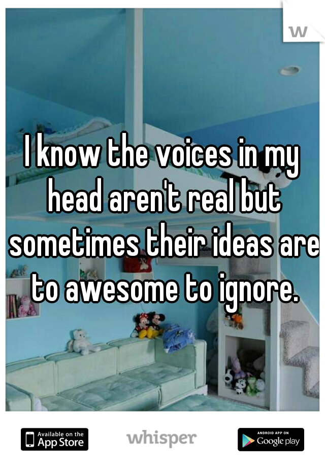 I know the voices in my head aren't real but sometimes their ideas are to awesome to ignore.