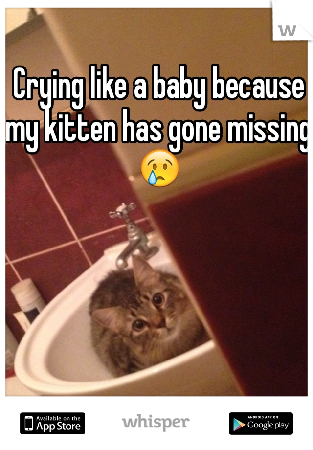 Crying like a baby because my kitten has gone missing 😢