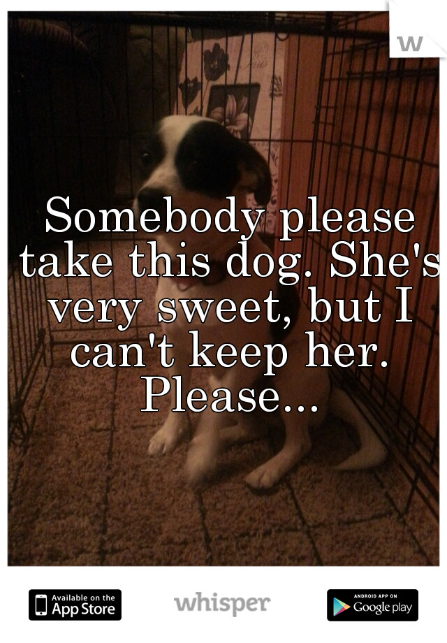 Somebody please take this dog. She's very sweet, but I can't keep her. Please...