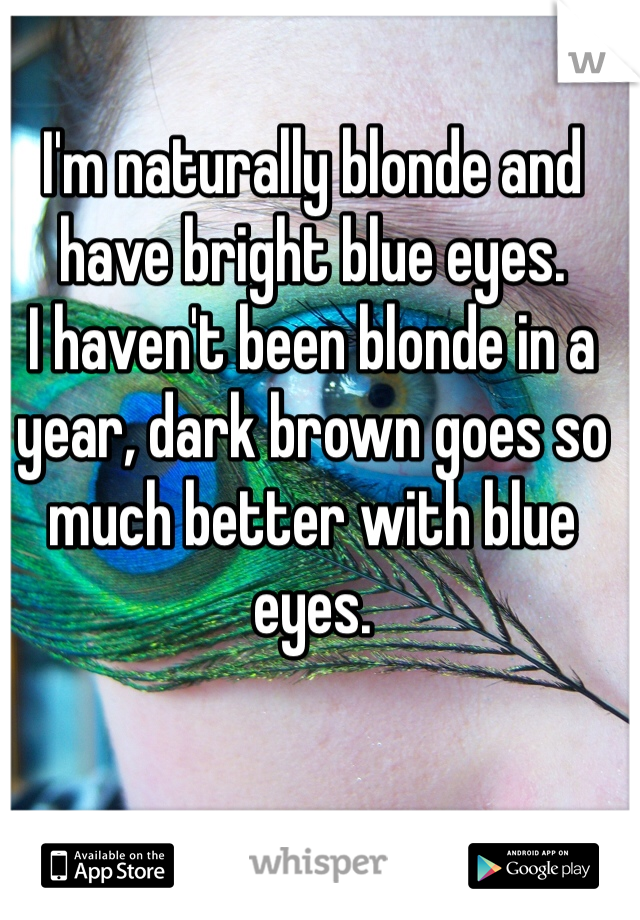 I'm naturally blonde and have bright blue eyes. I haven't been blonde in a year, dark brown goes so much better with blue eyes.