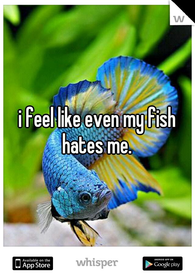 i feel like even my fish hates me.