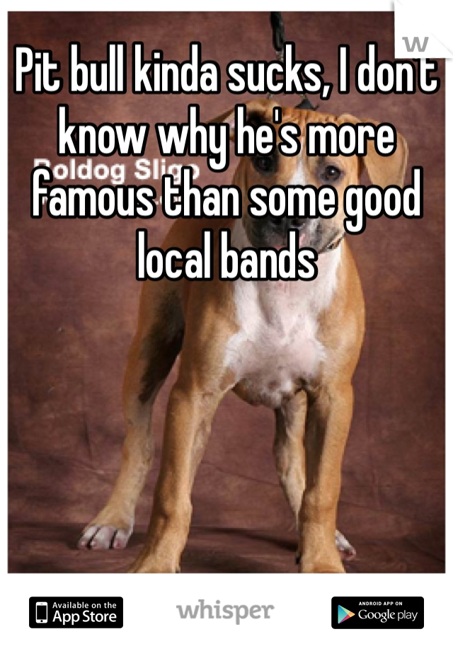 Pit bull kinda sucks, I don't know why he's more famous than some good local bands