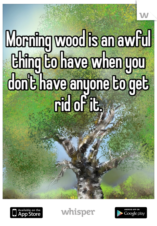 Morning wood is an awful thing to have when you don't have anyone to get rid of it.