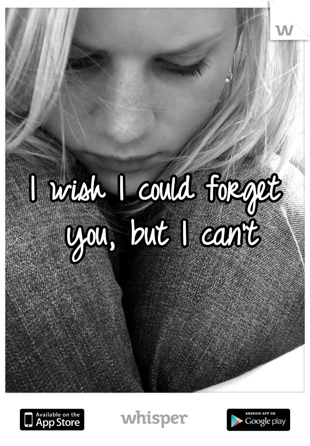 I wish I could forget you, but I can't