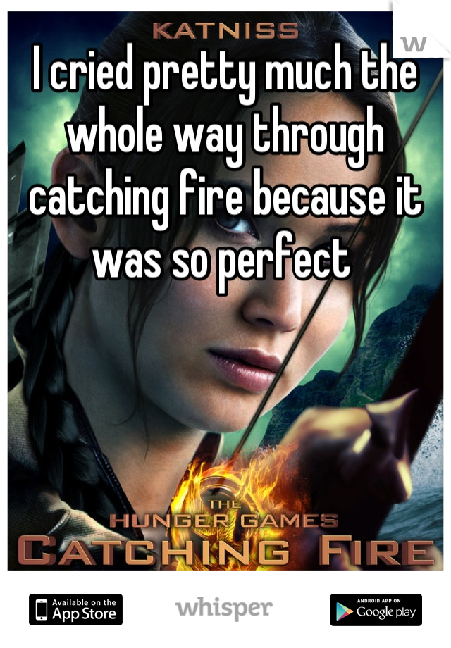 I cried pretty much the whole way through catching fire because it was so perfect
