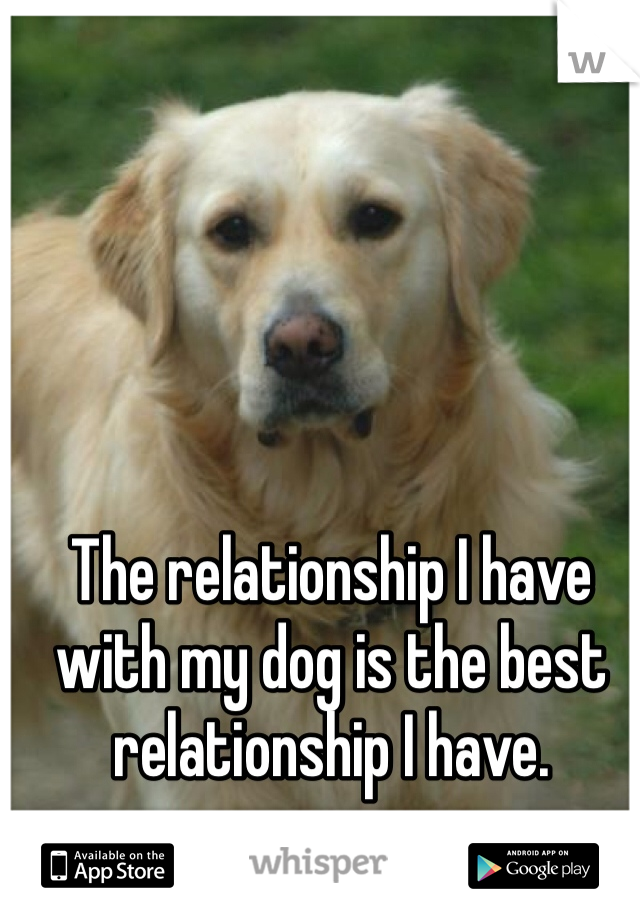 The relationship I have with my dog is the best relationship I have.