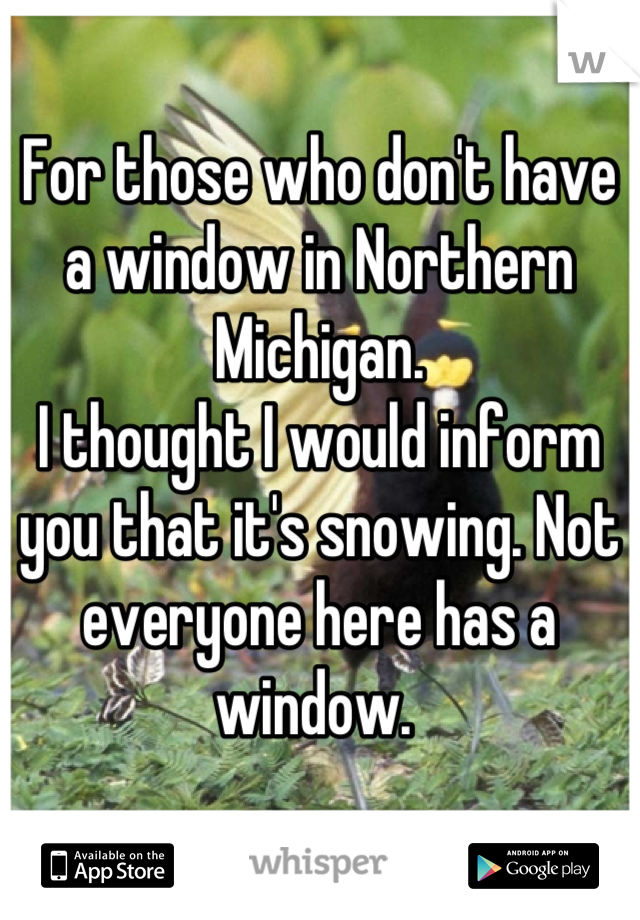 For those who don't have a window in Northern Michigan.  I thought I would inform you that it's snowing. Not everyone here has a window.