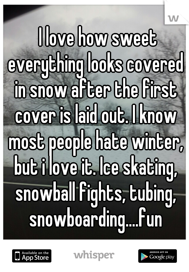 I love how sweet everything looks covered in snow after the first cover is laid out. I know most people hate winter, but i love it. Ice skating, snowball fights, tubing, snowboarding....fun