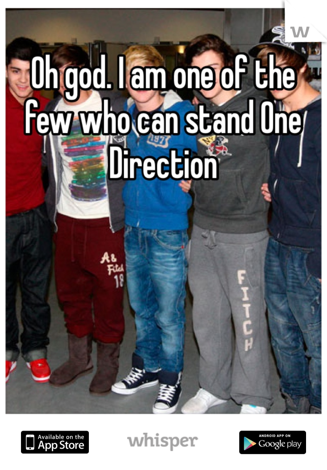 Oh god. I am one of the few who can stand One Direction
