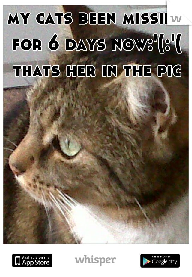 my cats been missing for 6 days now:'(:'(  thats her in the pic