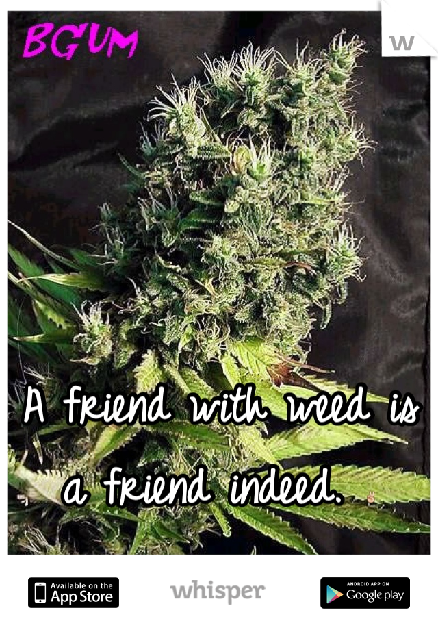 A friend with weed is a friend indeed. ✌