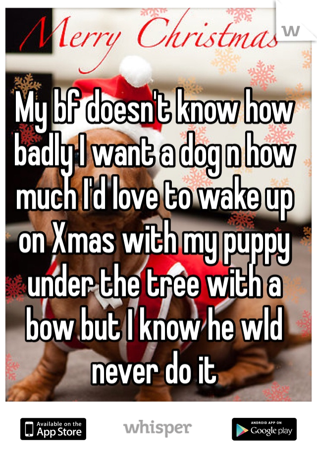 My bf doesn't know how badly I want a dog n how much I'd love to wake up on Xmas with my puppy under the tree with a bow but I know he wld never do it