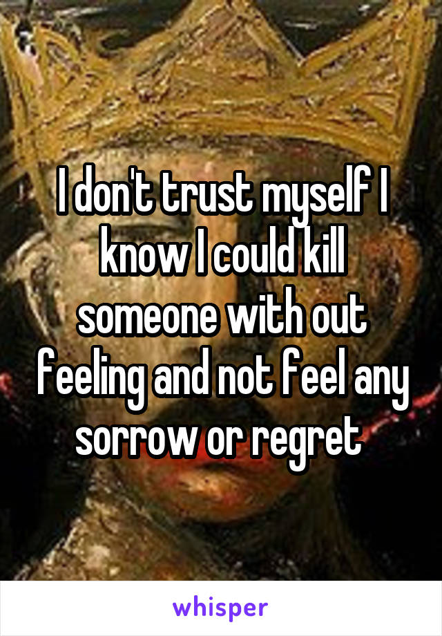I don't trust myself I know I could kill someone with out feeling and not feel any sorrow or regret