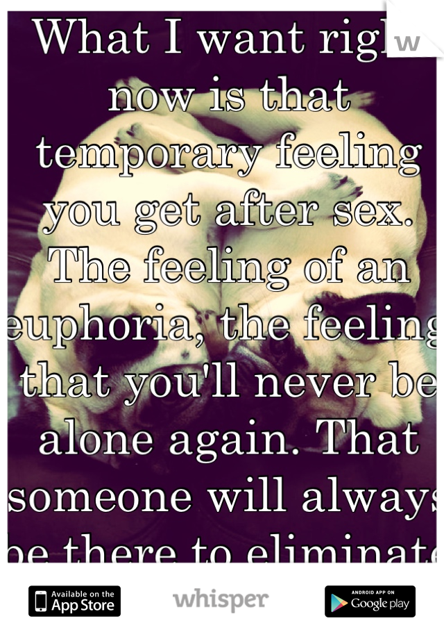What I want right now is that temporary feeling you get after sex. The feeling of an euphoria, the feeling that you'll never be alone again. That someone will always be there to eliminate loneliness.